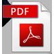 icon adobe pdf